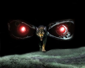 Волк это в первую очередь высший